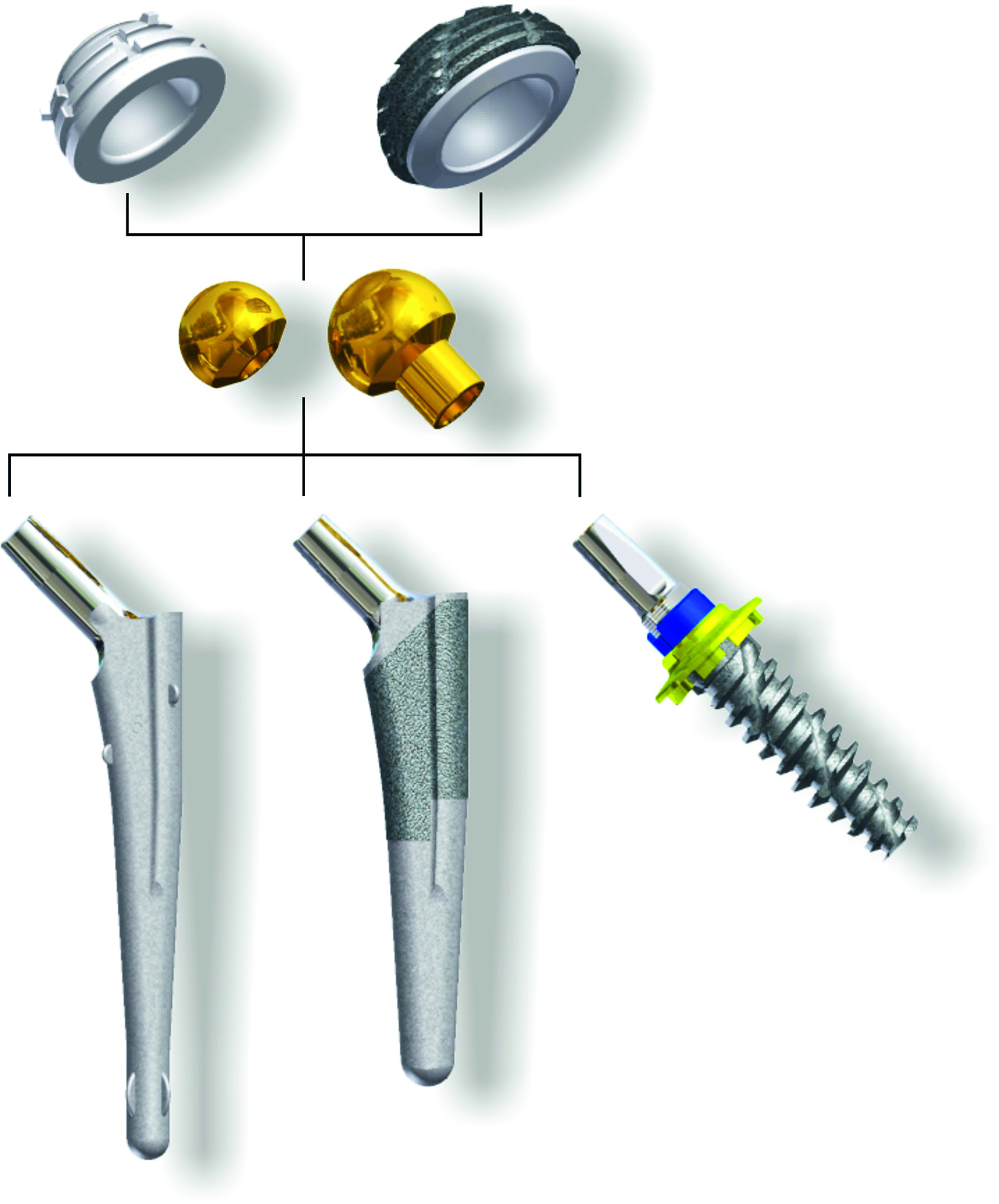 Innoplant Total Hip Replacement