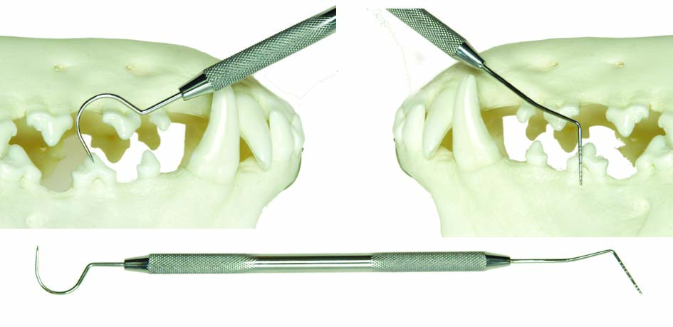 Periodontal Instruments